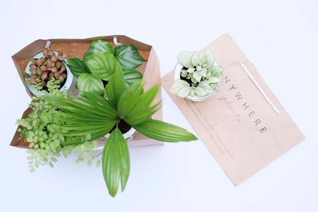 Đi đâu ở Hà Nội để tìm những món đồ nhỏ nhỏ, xinh xinh bày biện trong nhà? - Ảnh 6.