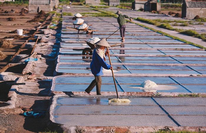 Cánh đồng muối nổi tiếng bậc nhất Nam Định nằm ở thôn Văn Lý, xã Hải Lý, huyện Hải Hậu. Như bao diêm dân khác, những người làm muối ở đây rất vất vả để cho ra được những hạt muối trắng ngần.