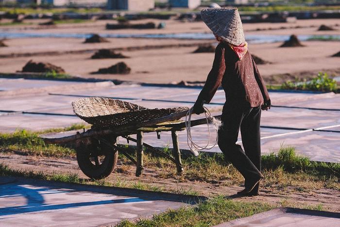 Ruộng muối ở xã Văn Lý chỉ cách nhà thờ đổ nổi tiếng ở Nam Định khoảng một km. Nên nếu có dịp, bạn hãy ghé qua ruộng muối và trải nghiệm một ngày làm diêm dân.