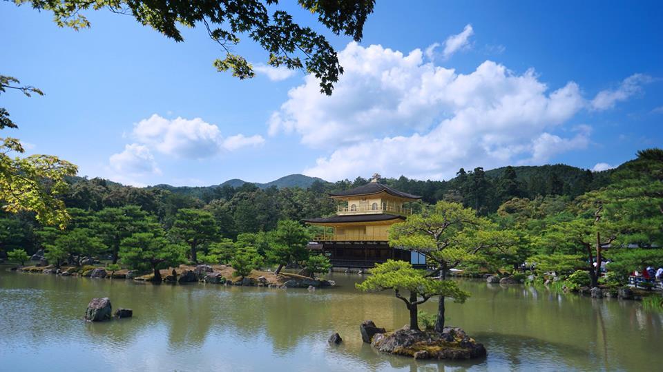 Ai đang ấp ủ một chuyến đi Nhật đúng nghĩa, hãy tham khảo review của cô nàng này! - Ảnh 21.