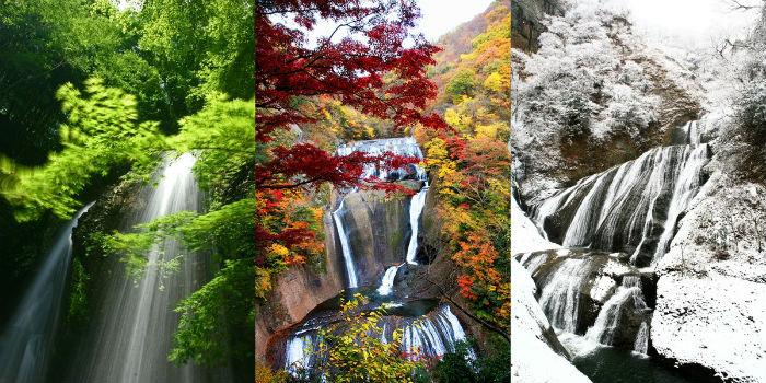 Ngoài công viên Hitachi, tỉnh Ibaraki còn rất nhiều điểm đến nổi tiếng và tuyệt đẹp khác. Một trong số đó là thác Fukuroda, được mệnh danh đẹp thứ 3 tại Nhật Bản.