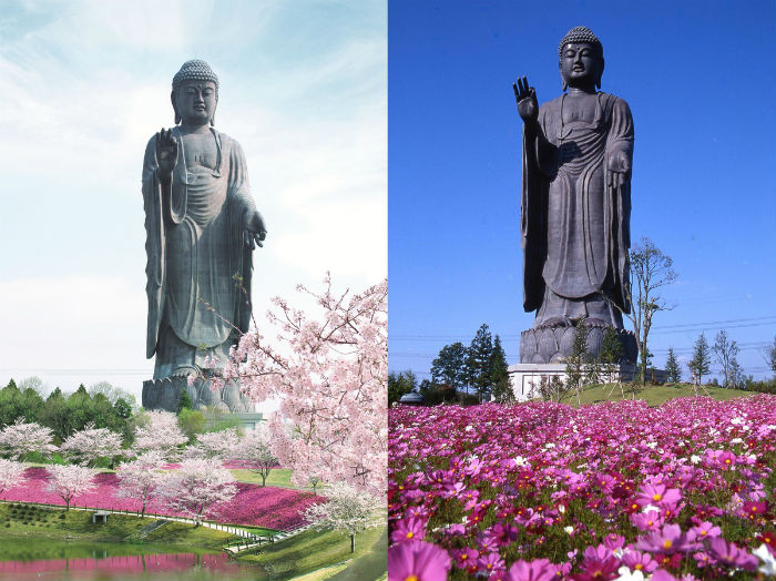 Tượng Phật Ushiku là bức tượng đồng lớn nhất thế giới, đặt tại tỉnh Ibaraki.