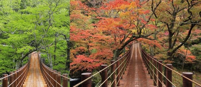 Thung lũng Hananuki là nơi ngắm lá phong lý tưởng. Cảnh sắc nơi này biến đổi theo mùa khiến du khách có dịp quay lại vào thời điểm khác trong năm không khỏi ngỡ ngàng.