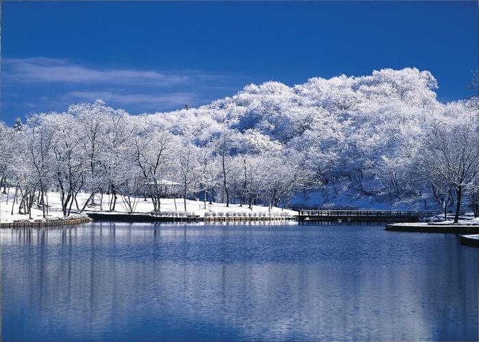 Mùa đông, cây cối ở Ibaraki trở nên trơ trụi nhưng những bông tuyết trắng đã tạo nên nét quyến rũ riêng cho vùng đất thiên nhiên hùng vĩ này.