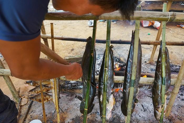 Khi mùa mưa đến, tháng 8 đến tháng 10 nguồn cá trở nên dồi dào, người dân chài lại bày bán những mẻ cá tươi hoặc đổ buôn cho chủ các lán hàng hai bên đường lên động Thác Bờ