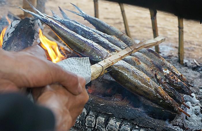 Cá thiều một loài cá chỉ có ở lòng hồ sông Đà, thịt cá mềm, ngọt, vảy cá nhỏ. Cá phù hợp chế biến các món nướng khi ăn cuốn bánh đa nem hoặc chấm muối tiêu chanh.