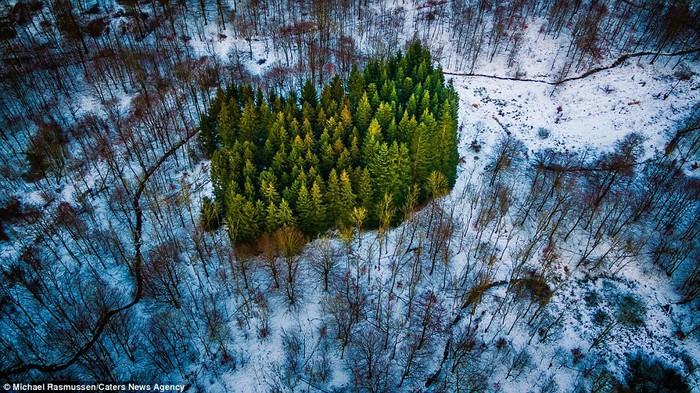 Michael Rasmussen, 39 tuổi, sống ở Naestved, Đan Mạch, yêu thích chụp hình các vùng nông thôn hẻo lánh. Bằng bộ máy điều khiển từ xa (drone), anh có thể chụp lại những mảng xanh của cây cối xen lẫn với màu tuyết trắng từ trên cao.
