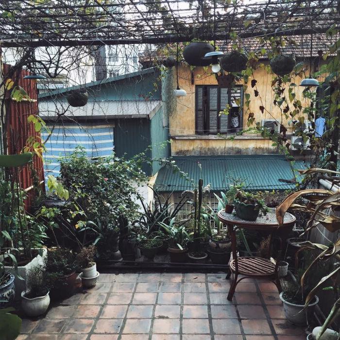 Bình yên với khu vườn con xinh xinh