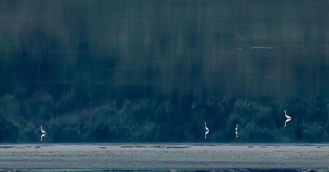 """Khoảnh khắc yên bình, mộc mạc ở """"ốc đảo xanh"""" Tuy Lai"""