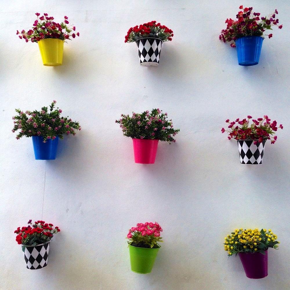 Mỗi hoa mỗi sắc