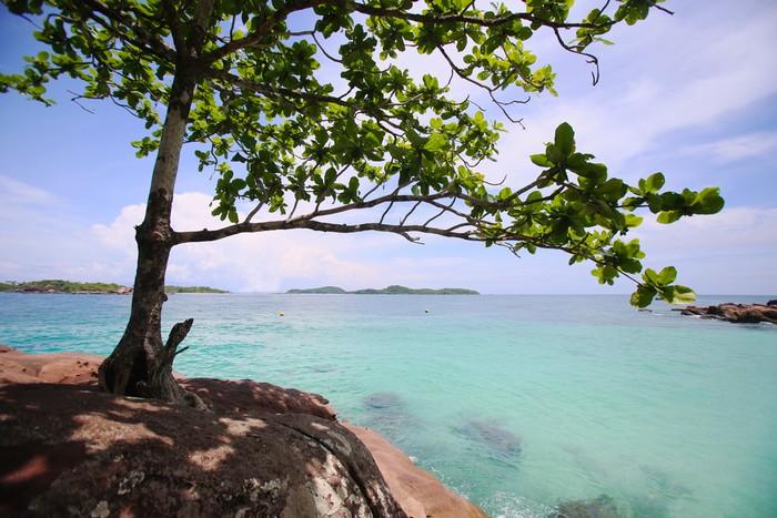 Bãi cát trắng trải dài, những mỏm đá nhỏ nhô lên khỏi mặt nước cùng hàng dừa mọc hướng ra biển. Cảnh vật xung quanh đặc biệt hơn khi có những cây bàng cổ thụ mọc trên đá.