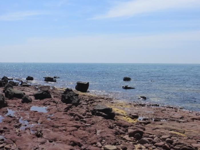 Bãi đá được sóng biển bào mòn có hình thù kỳ dị trải dài bên bờ biển - Ảnh: Hanoivaem204