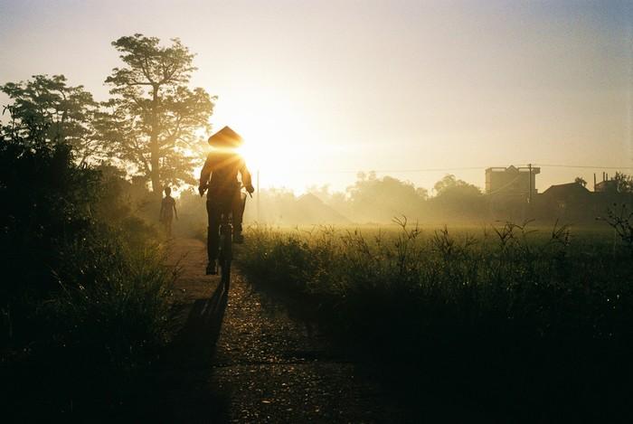 Yêu lắm cảnh vật vùng quê lúa Thái Bình