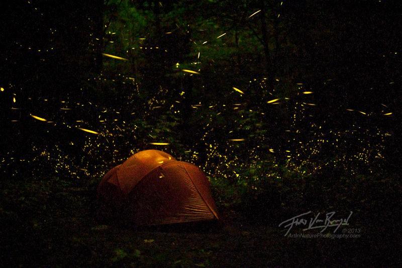 Nơi lý tưởng để cắm trại qua đêm vào dịp hè