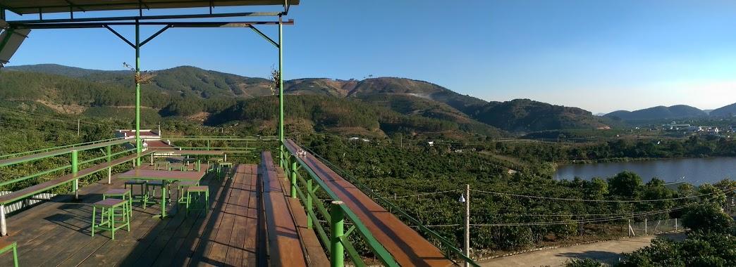 Ngay dưới chân quán là một trang trại cà phê nhỏ, phía trước mặt là hồ Đập Cam Ly.
