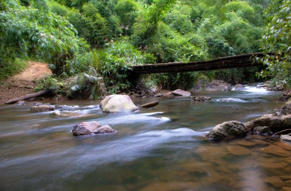 Phong cảnh thiên nhiên hữu tình, thơ mộng làm bao người ngẩn ngơ