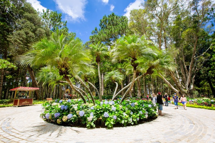 Một trong những lý do Bảo Đại chọn Dinh I làm Tổng hành dinh là nơi đây có vị trí đẹp và yên tĩnh. Trên hình là vườn hoa lớn trước cửa Dinh I.