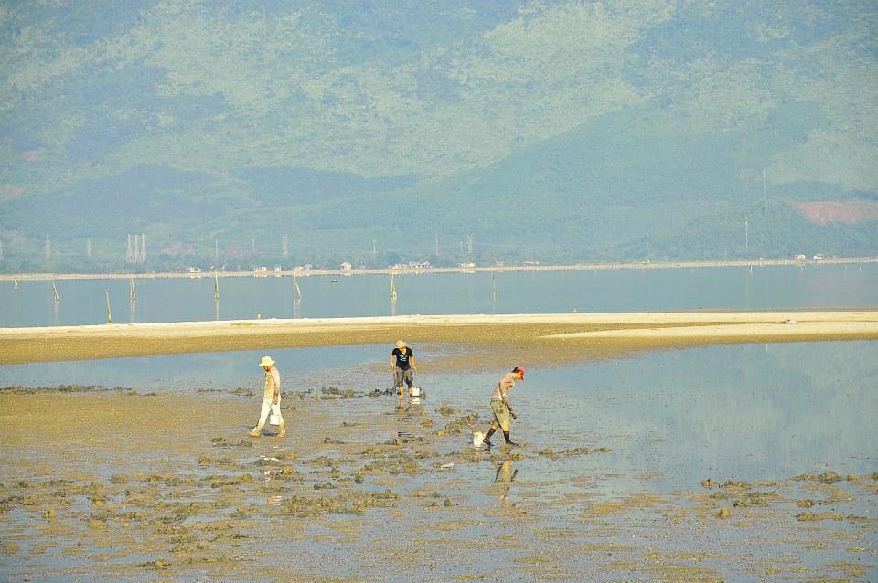 Khi thủy triều xuống, người dân địa phương đi đào những đụn cát để tìm hải sâm, hay có một tên gọi khác là sá sùng biển. Đây là một loại thực phẩm giàu chất đạm và tốt cho sức khỏe, mang lại lợi nhuận kinh tế cao cho người dân địa phương.