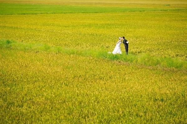Những bộ ảnh cưới đẹp xuất sắc khi các cặp đôi nước ngoài sang Việt Nam chụp - Ảnh 30.