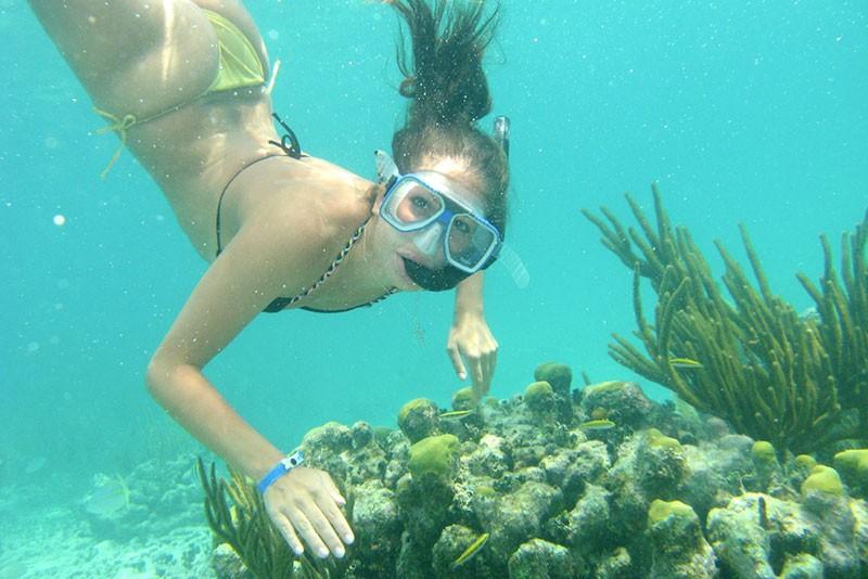 Lặn ngắm san hô và thế giới mới trong lòng đại dương