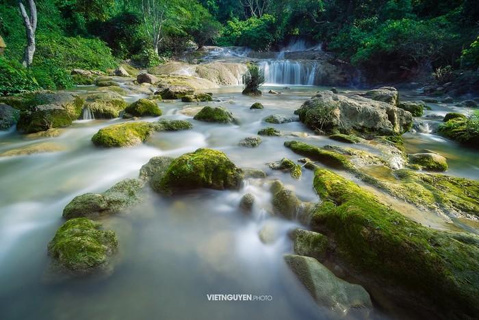 Những tảng đá phủ rêu xanh đẹp miên man