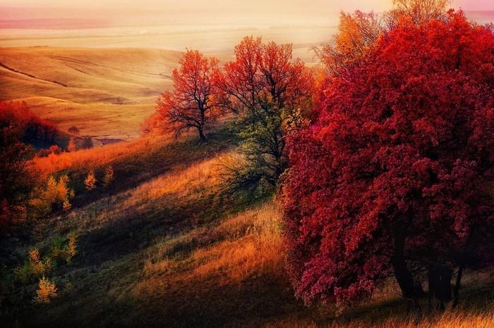 Trong ảnh là mùa thu ở Tatarstan, Nga. Cộng hòa Tatarstan là một chủ thể liên bang của Nga, có diện tích 68.000 km2 và nằm giữa sông Volga cùng sông Kama.