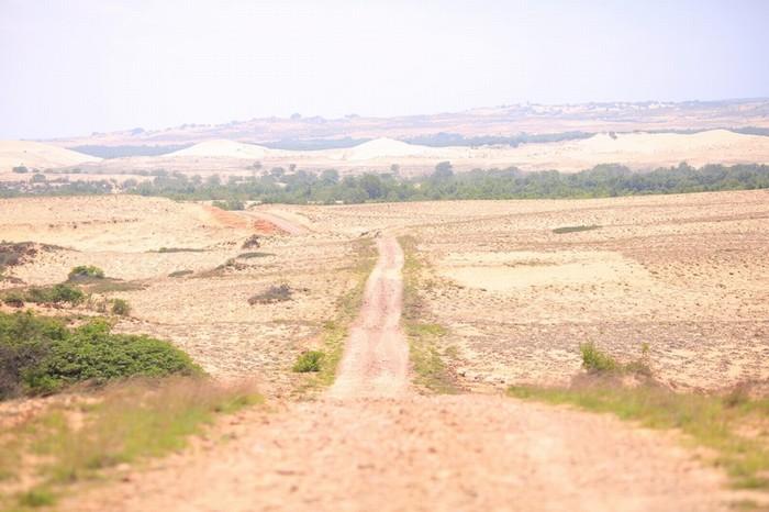 14h30 đến Bàu Trắng, bạn phải đi vào con đường mòn băng ngang sa mạc cát đỏ lồng lộng gió, dẫn vào Mũi Yến