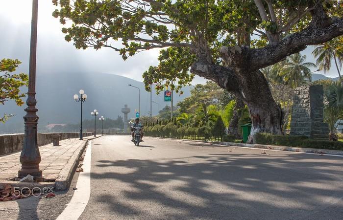 Những con đường xanh sạch đẹp