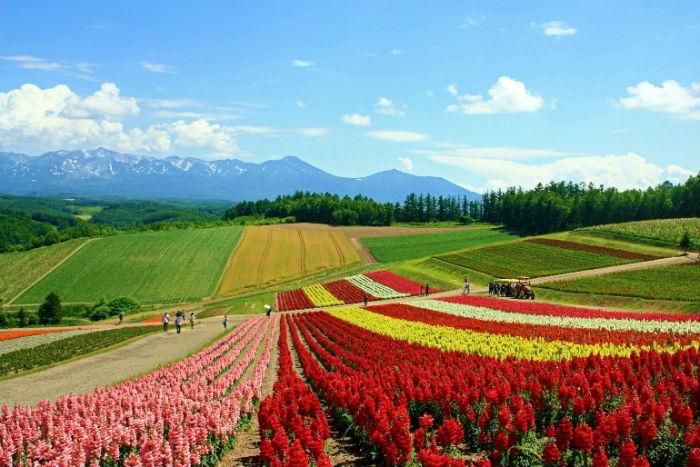 Hokkaido, Nhật Bản