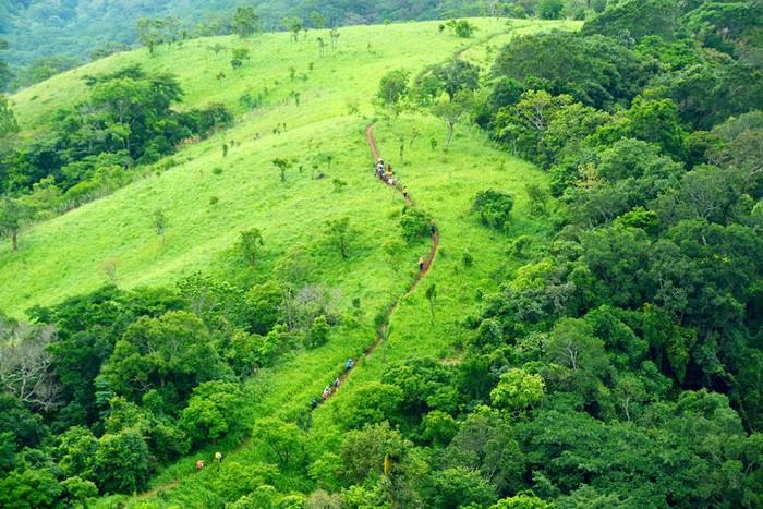 Thu cả rừng xanh vào ống kính