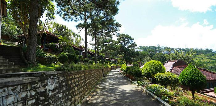 Quang cảnh xanh rì , tràn đầy sức sống phủ quanh khu nghỉ dưỡng