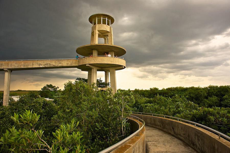 Đài quan sát với tầm nhìn 360 độ toàn cảnh công viên. Với những người ưa khám phá, họ thường chọn những con đường mòn để tự đạp xe hoặc đi xe điện.