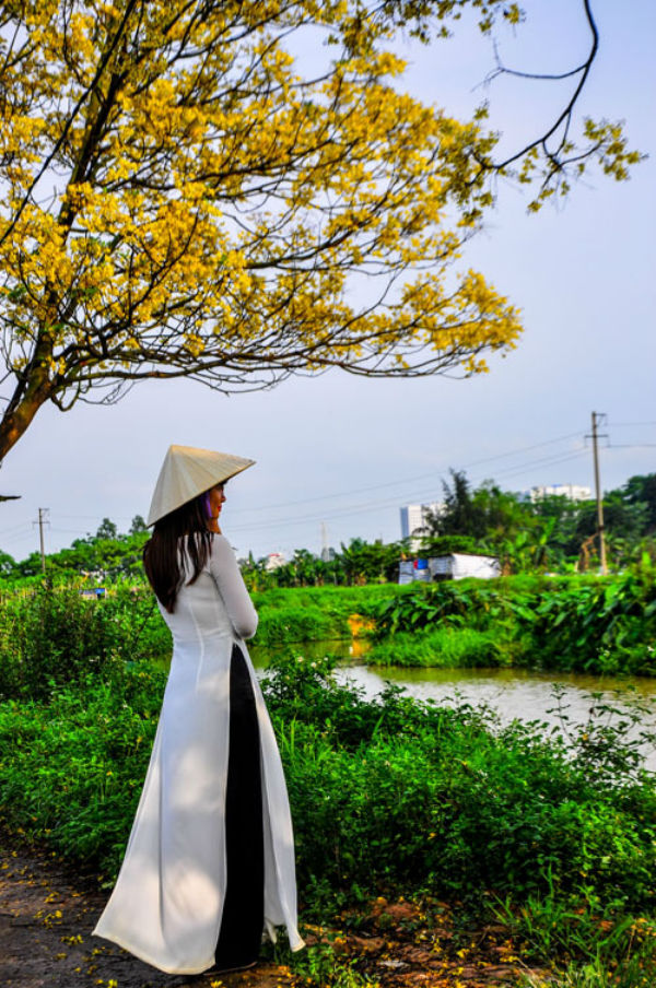 Không ít thiếu nữ cất công mang theo váy, áo dài, nón lá, xe đạp để chụp ảnh cùng hàng cây điệp. Con đường không ở gần khu đô thị nên không quá đông đúc, bạn có thể thỏa sức tạo dáng.