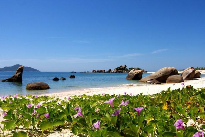 Sau khi chiêm ngưỡng những con đường đầy ấn tượng, bãi biển Bình Lập chắc chắn sẽ còn làm du khách hài lòng hơn nữa