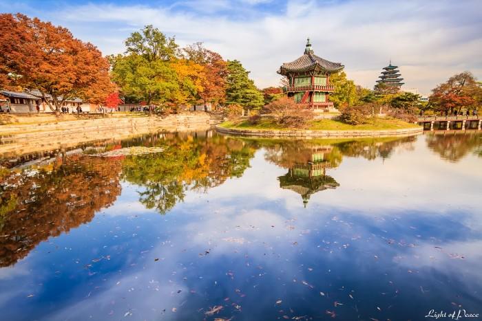 Hàn Quốc của mùa thu. -Ảnh: Habibi