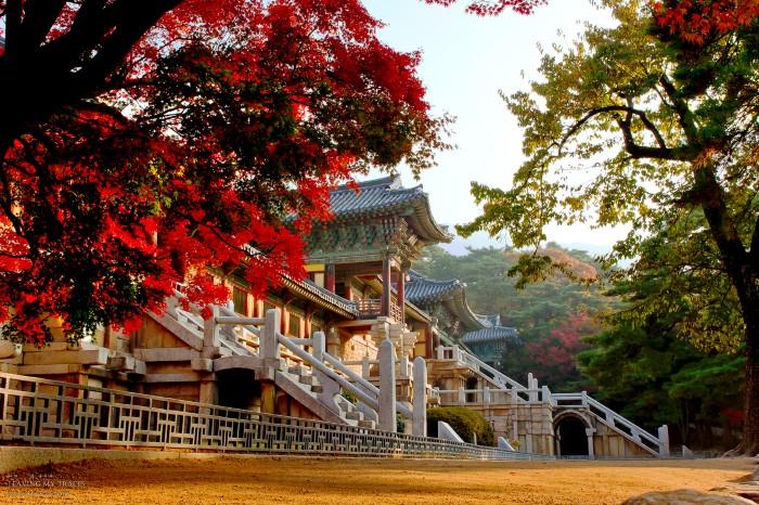 Mùa thu ở nơi ngôi chùa thiêng liêng bậc nhất. -Ảnh: chdy118