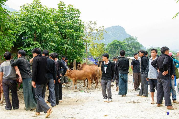 Từ thành phố Hà Giang đến Minh Ngọc (huyện Bắc Mê) rồi tới Du Già (huyện Yên Minh) dài khoảng 70 km, là đường đèo núi nhưng mặt đường tốt