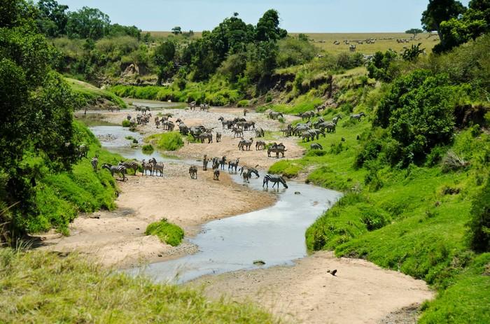 Một khu bảo tồn thiên nhiên lớn nhất ở Đông Phi