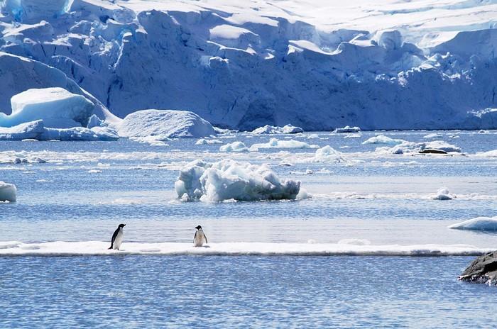 Một Nam Cực đẹp như phim viễn tưởng của ngày xưa