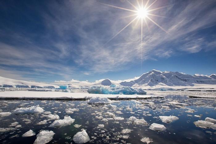 Cùng với sự biến đổi của khí hậu toàn cầu