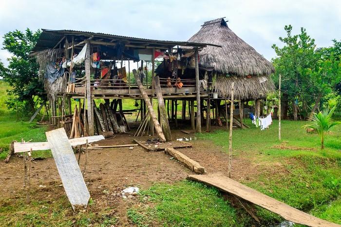 Và những ngôi nhà ở tạm bợ của người bản địa