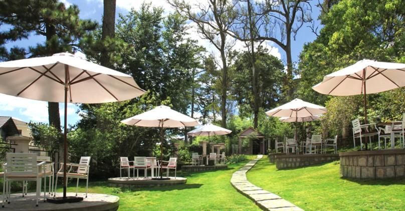 Quán cafe thiết kế tinh tế giữa nền cỏ xanh và cây rừng