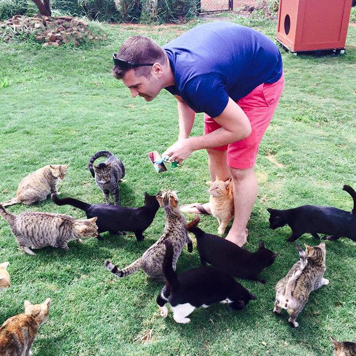 Lanai là một hòn đảo nhỏ thuộc bang Hawaii, Mỹ, nơi du khách khắp thế giới đổ về để được chơi đùa với rất nhiều mèo. Hòn đảo đang là nơi trú ngụ của gần 500 con mèo các loại.