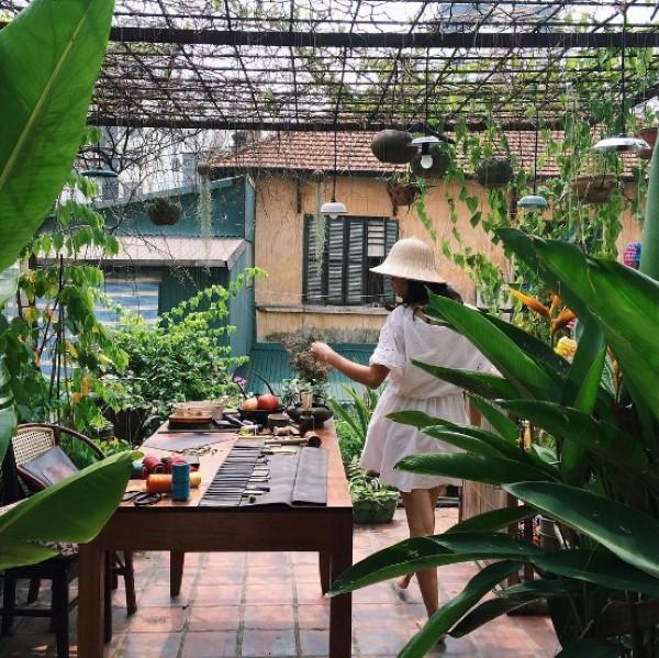 Căn vườn đầy màu xanh và ánh sáng ở Nhà trong xóm.