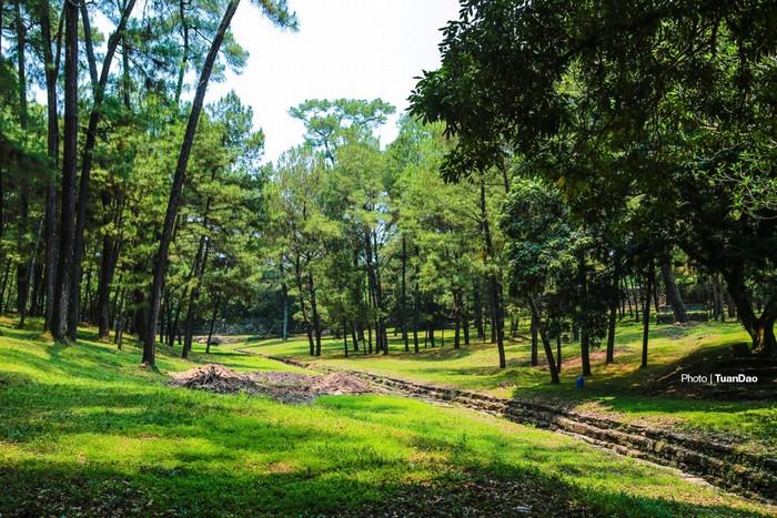 Cả một rừng thông xanh phía sau lăng vua, từ đây có thể đi sang điện Lương Khiêm, xưa là chỗ nghỉ ngơi của vua, sau được dùng để thờ vong linh thái hậu Từ Dũ, mẹ vua Tự Đức.