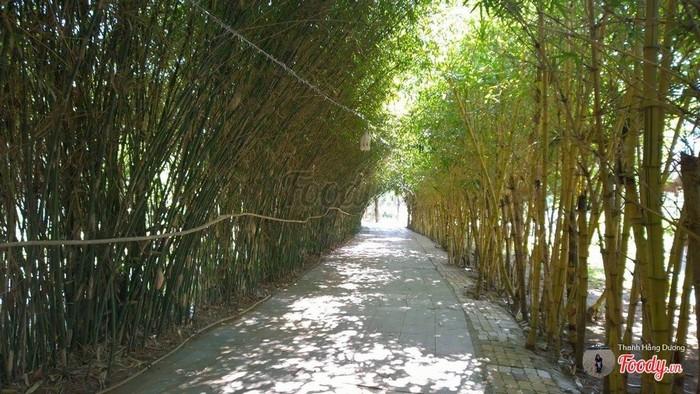 Con đường tre trúc mát rượi sống ảo như bên Trung Quốc luôn.