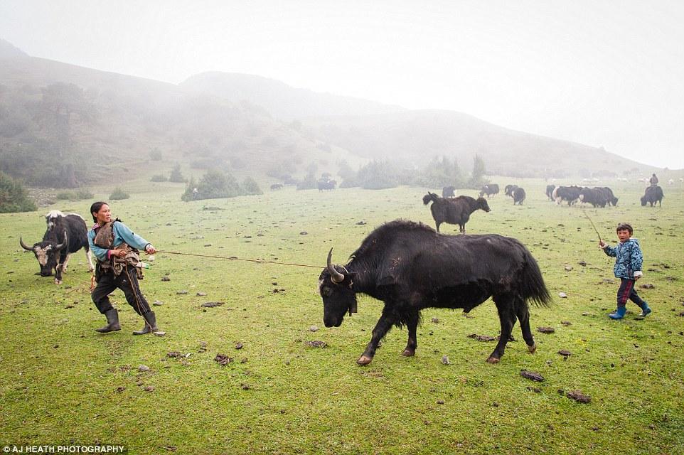 AJ Heath đã dành hai tuần để sống cùng dân làng và thực hiện các bộ ảnh tập trung vào 4 nhóm dân tộc chính ở Bhutan.