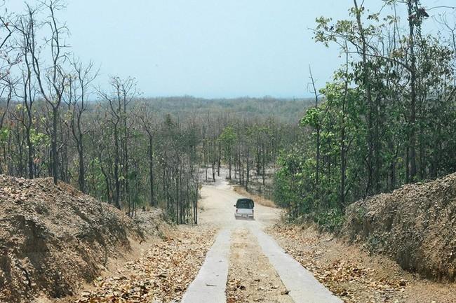 Đi Thái không chỉ có Bangkok hay biển, còn cả một miền Bắc xanh tươi rừng núi đang chờ bạn - Ảnh 5.