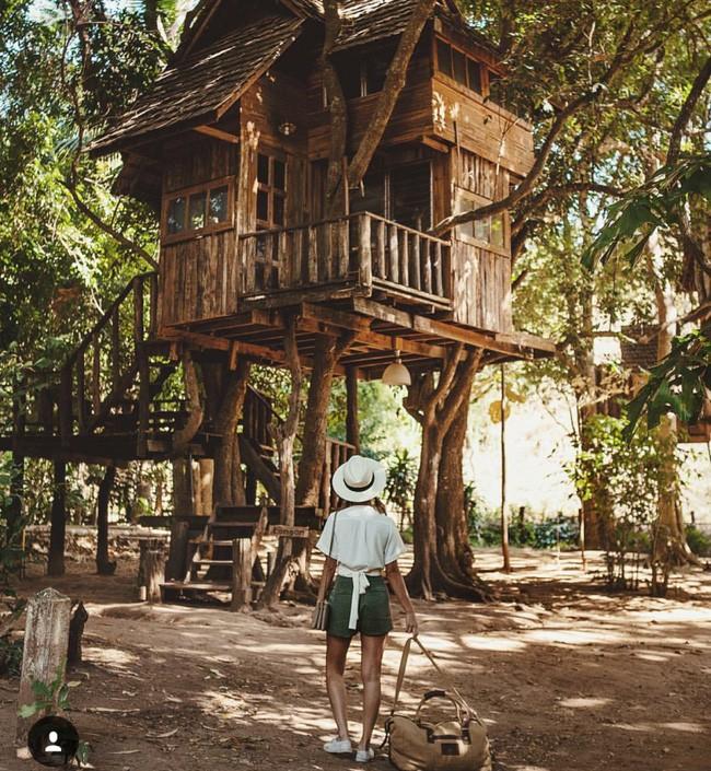 Đi Thái không chỉ có Bangkok hay biển, còn cả một miền Bắc xanh tươi rừng núi đang chờ bạn - Ảnh 7.
