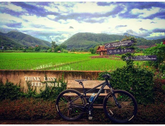 Đi Thái không chỉ có Bangkok hay biển, còn cả một miền Bắc xanh tươi rừng núi đang chờ bạn - Ảnh 16.
